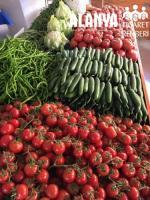 Taze ve Organik Sebzeler Alanya da Akış Manavda Bulunur.