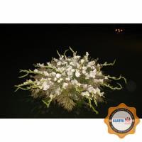 Alanya Çiçek Siparişi